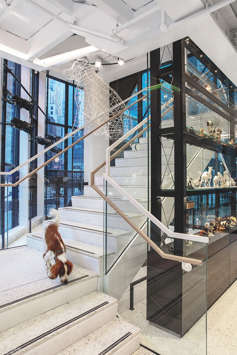 thumbs_Interior-Design-American-Kennel-Club-Museum-of-the-Dog-New-York-09-0319.jpg.770x0_q95